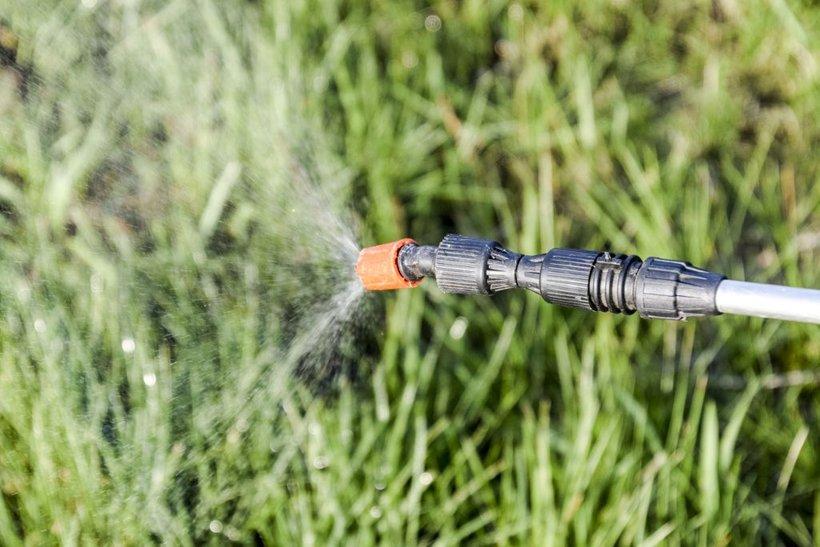 V civilni iniciativi so opozorili na to, da škropiva s hmeljišč zanaša vse naokoli.