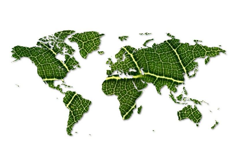Za izpolnitev ciljev Pariškega sporazuma in uspešno tranzicijo finančnega sistema, ki bi spodbudil zeleno gospodarstvo, je nujno potrebno povečanje vlaganj v trajnostne, okolju in družbi prijazne investicije, pri čemer je izjemnega pomena globalno sodelovanje.