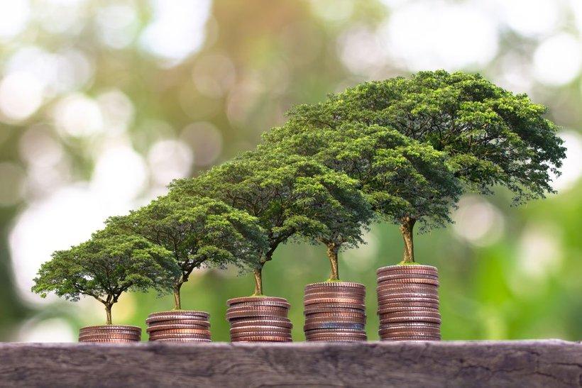 Poleg tega Evropska komisija veliko stavi na t. i. sistem klasifikacije ali 'taksonomijo', da se na trgu zagotovi jasna merila glede tega, kaj sploh je 'trajnostno oziroma zeleno'.