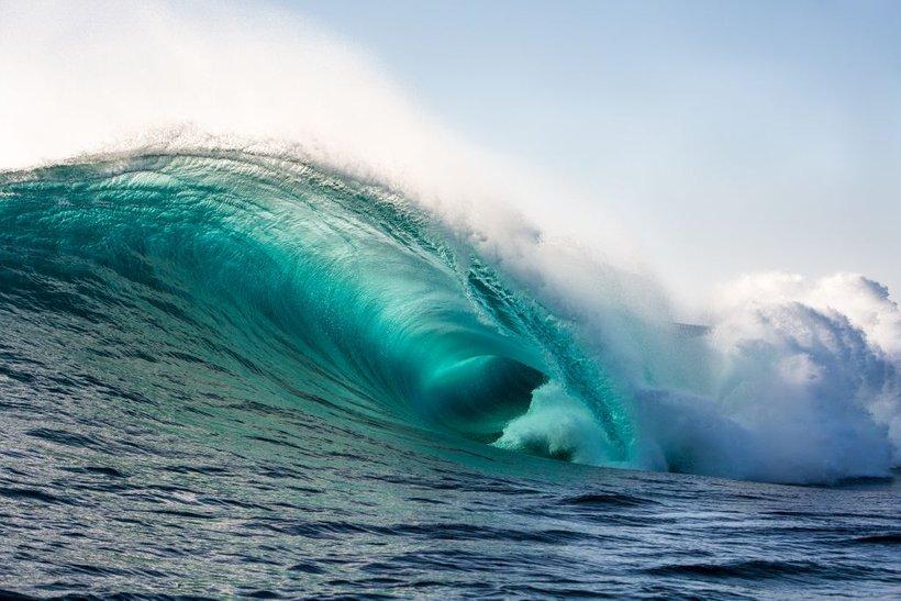 WWF poziva vse vlade sredozemskih držav in EU kot podpisnico barcelonske konvencije k skupni zavezi in ukrepom za ohranitev Sredozemlja pred onesnaženjem s plastiko.