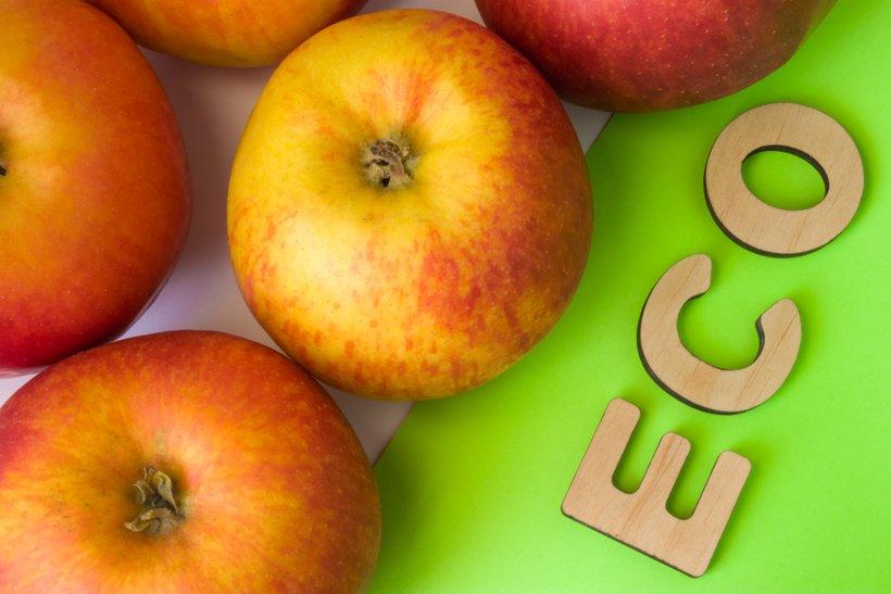 """Če se neko živilo označuje kot """"ekološko"""", mora biti zanj izdan certifikat, ki ga izda pooblaščena organizacijaza kontrolo in certificiranje ekološke pridelave."""