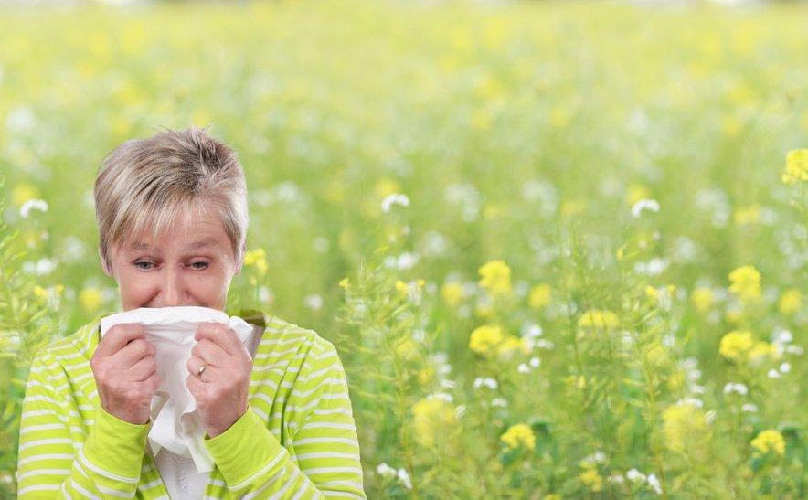 Najpogostejši alergeni so pelodi trav, dreves in plevelov.