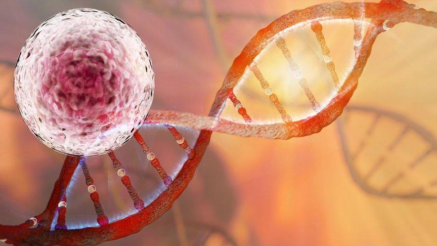 Sodobni načini zdravljenja raka – t.i. precizna medicina – so veliko bolj prilagojeni posamezniku kot nekoč. Da bi lahko izbrali precizno zdravljenje za vsakega bolnika posebej, je potreben natančen vpogled v lastnosti tumorja. To omogočajo analize FoundationOne ali genomsko profiliranje (CGP - angl. comprehensive genomic profiling).