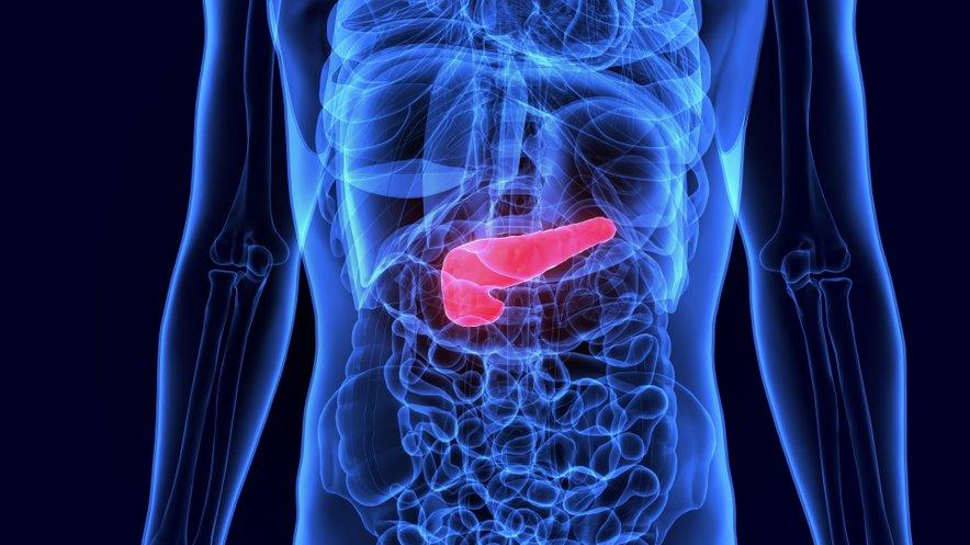 Dejavnik tveganja za raka trebušne slinavke naj bi bila tudi prekomerna teža. In sicer je nevarnejša pred 50. letom.