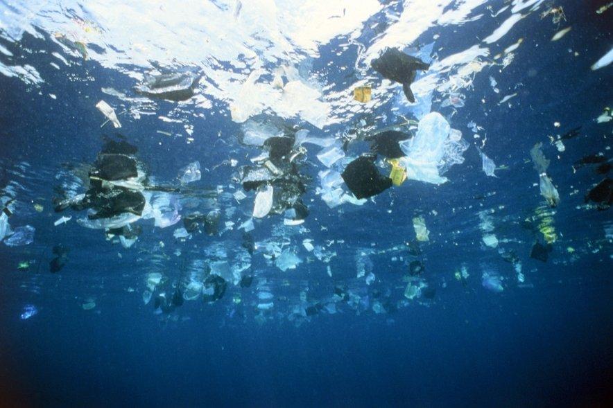 Večino plastike spuščamo v morje, kar pa močno vpliva na diverziteto in samo življenje organizmov v morju!