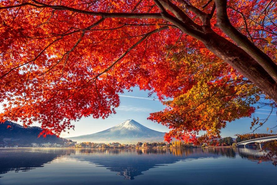 Japonska se vedno znova uvršča v sam vrh najvarnejših držav na svetu.