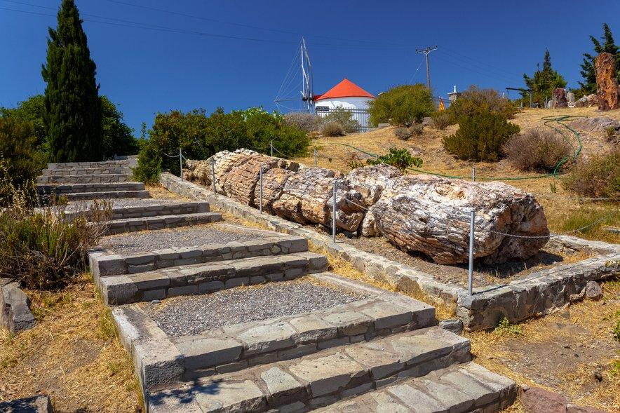 Okameneli gozd na otoku Lezbos