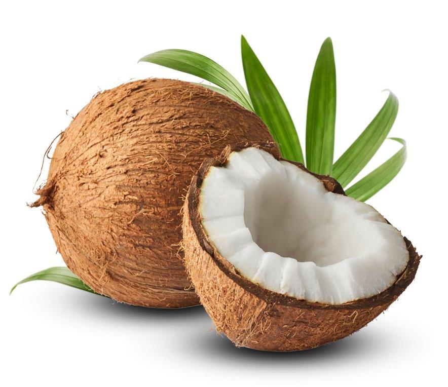 Znano je, da kokosovo olje očisti in izboljša simptome okužbe sečil in okužbe ledvic.