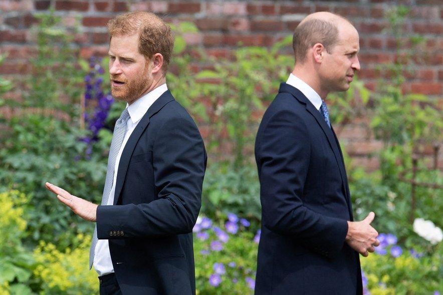 Princa Harry in William