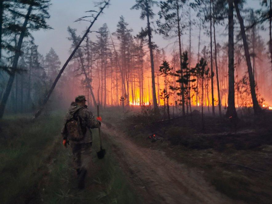 Požar v Sibiriji