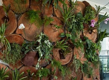 vertikalni vrt - naslovna