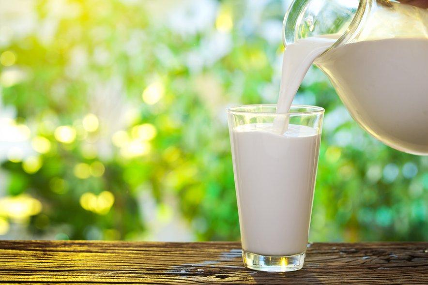 Na dan je priporočljivo spiti od 4 do 6 decilitrov mleka.