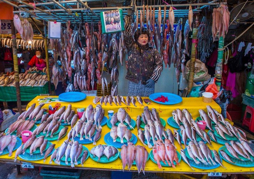 Jagalchi je ena najpomembnejših ribjih tržnic v Aziji.