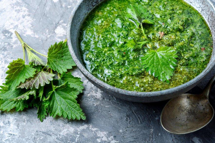 Kopriva je zelo zdravo živilo, primerna pa je za pripravo juh, omak in čajev.