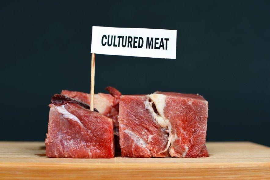Dokler ne bo prehrambena tehnologija še bolj napredovala in se bo ustvarila boljša rastlinska alternativa, bodo laboratorijsko gojeni mesni izdelki po vsej verjetnosti za povprečnega potrošnika nedosegljivi.