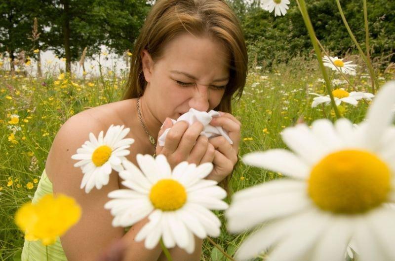 Z malo previdnosti lahko seneni nahod in druge alergijske bolezni močno omilite.