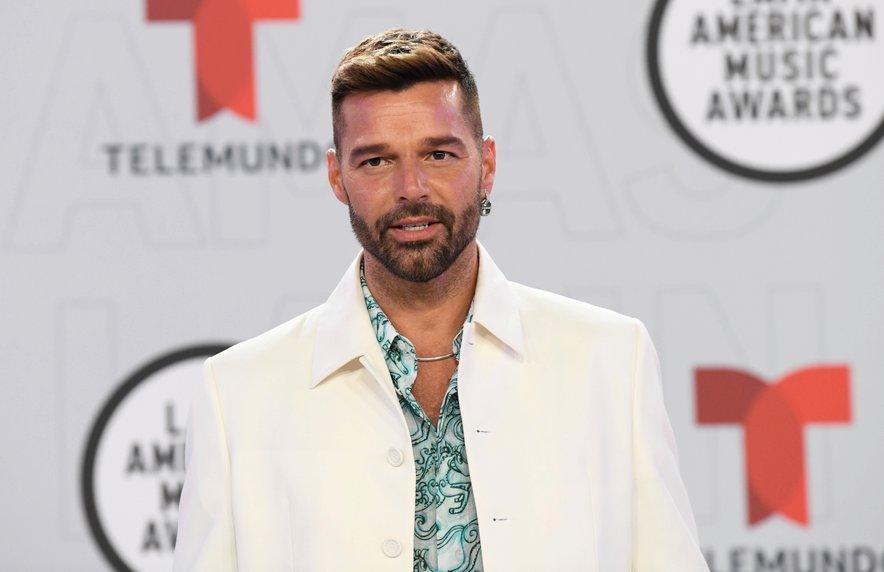 Ricky Martin je bil nekoč v zvezi z Rebecco de Alba.