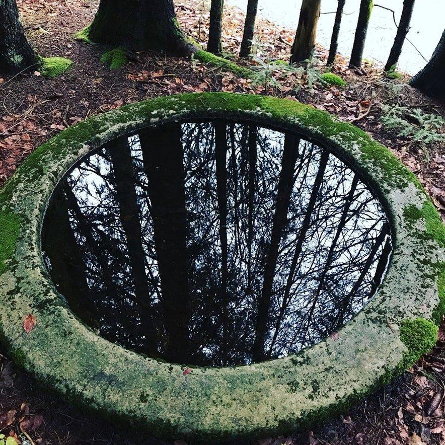 Fontana v gozdu pri Snežniku je ostanek italijanske finančne stražarnice, ki je tam obstajala zaradi rapalske meje.
