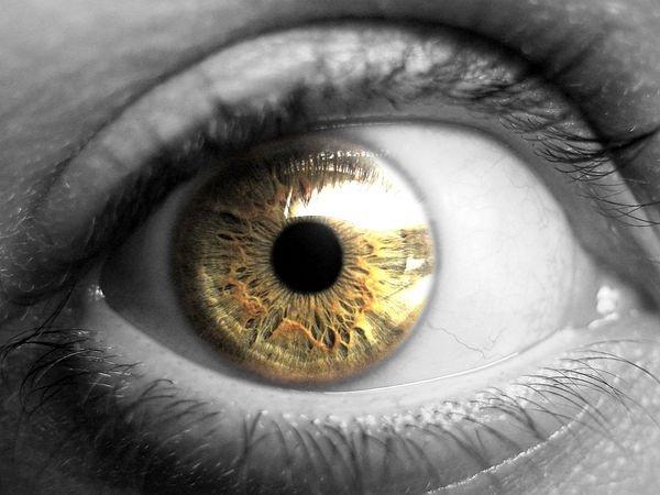 Slovenija beleži kar 4000 registriranih slepih in slabovidnih posameznikov, a bi teh v resnici moralo biti vsaj še enkrat več.