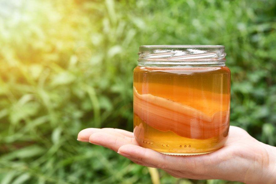 Kombučo pripravljajo iz črnega, zelenega, rdečega ali belega (pravega) čaja, ki ga dobro zasladijo.