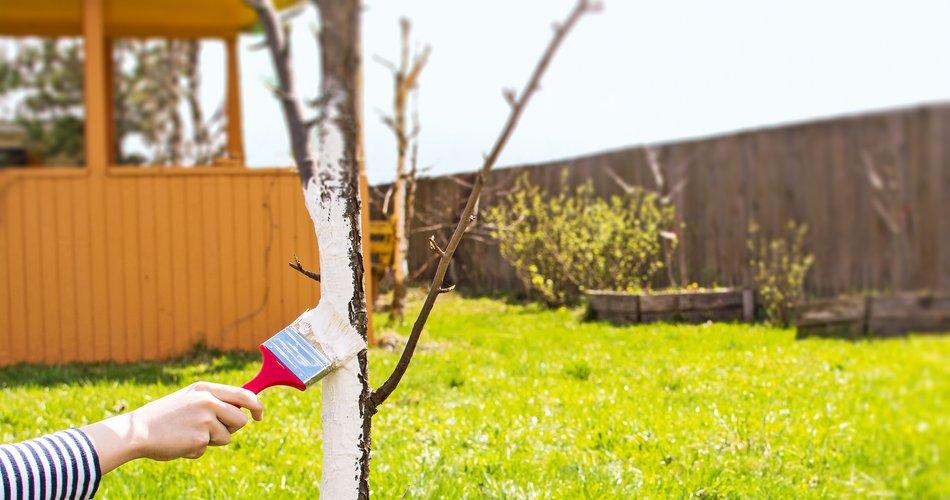 Na drevo obesite nogavičko z lasmi!