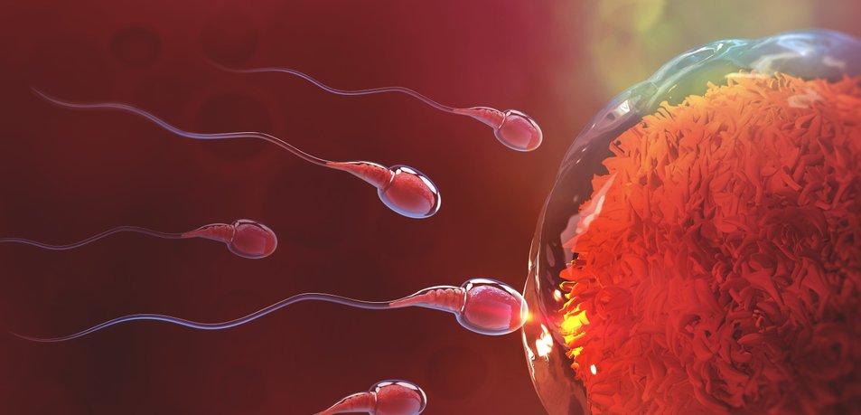 Ženske nosečnost odlašajo že v 40. leta
